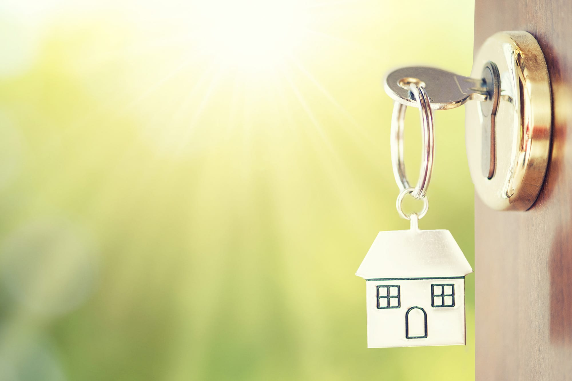 Tenants Guide to Letting