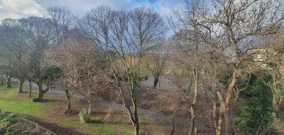 The Cedars, Herbert Park, Ballsbridge, Dublin 4